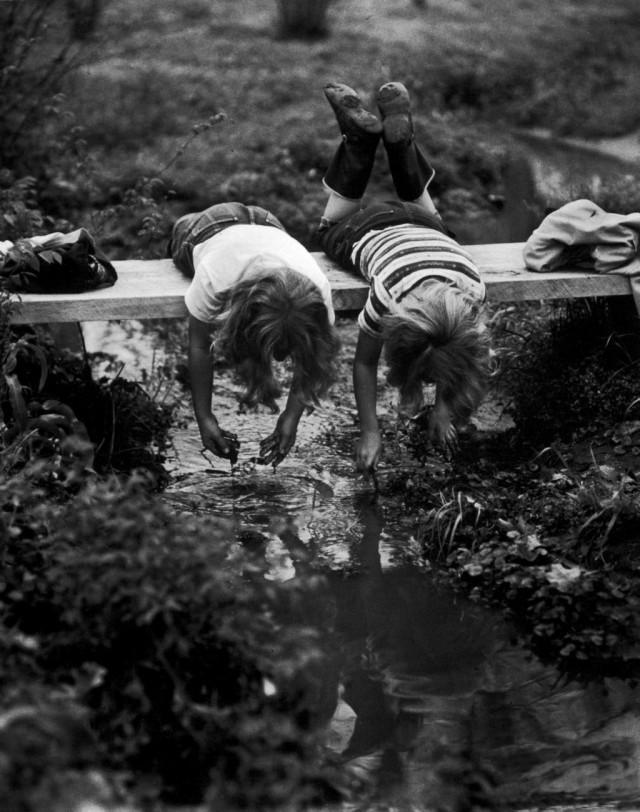 Юные любители природы, Кларксвилл, Арканзас, 1953. Фотограф Йель Джоэл