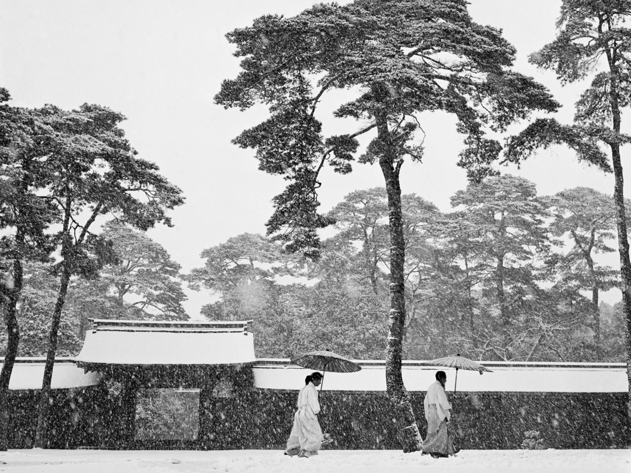 Синтоистские священники в саду храма Мэйдзи, Токио, 1951. Фотограф Вернер Бишоф