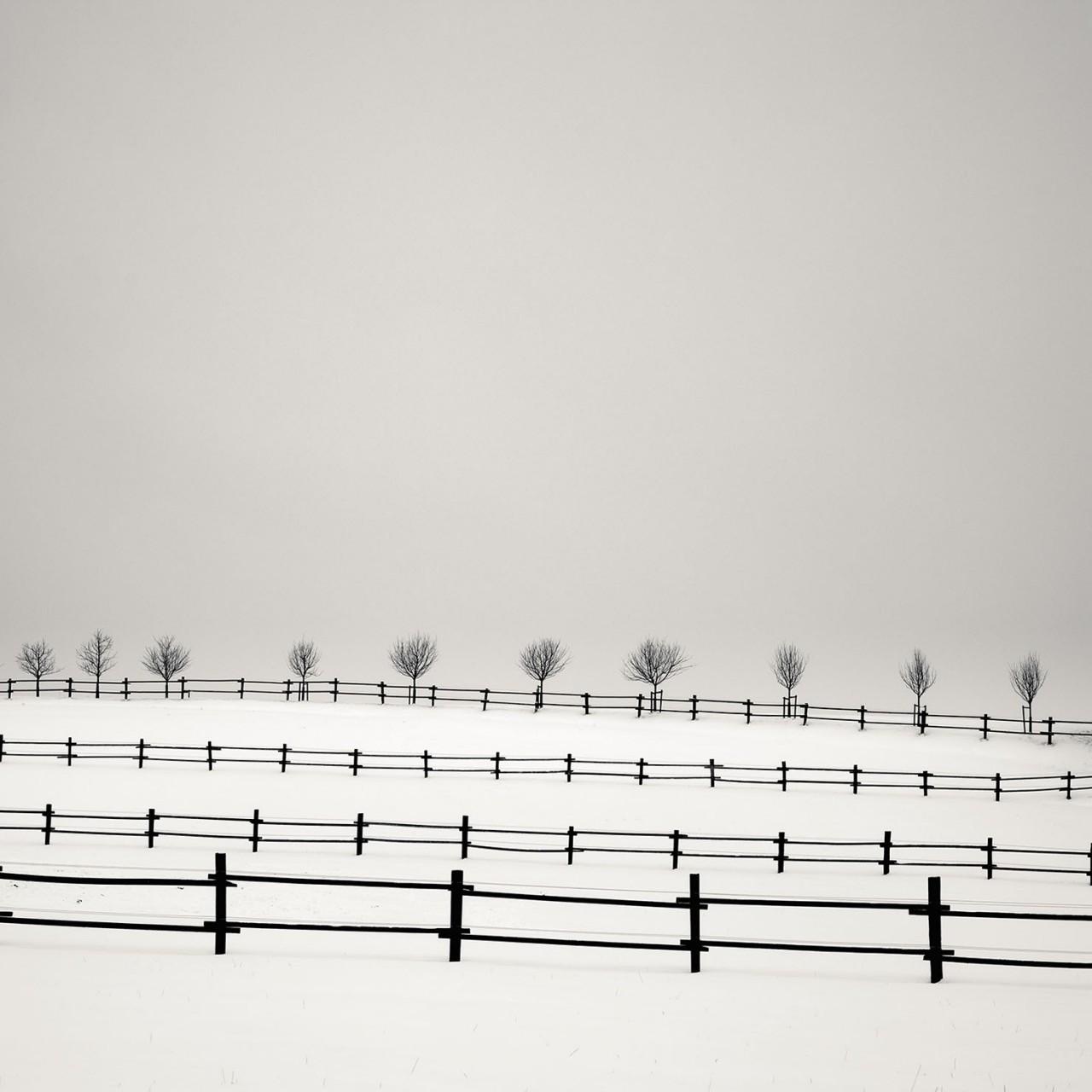 Частная собственность, Австрия, 2005. Фотограф Йозеф Хофленер