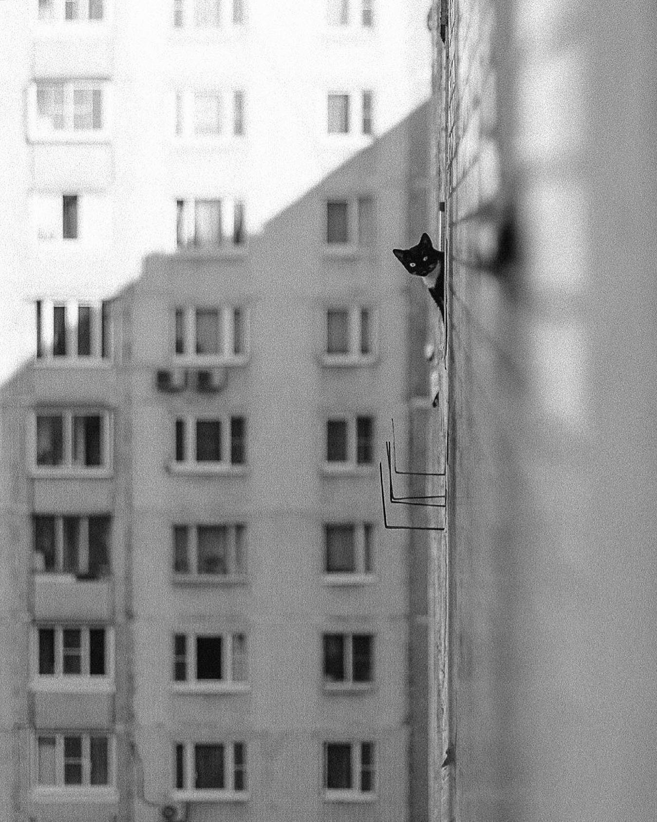 «Опасно». Москва, Марьино. Фотограф Виталий Зимарин