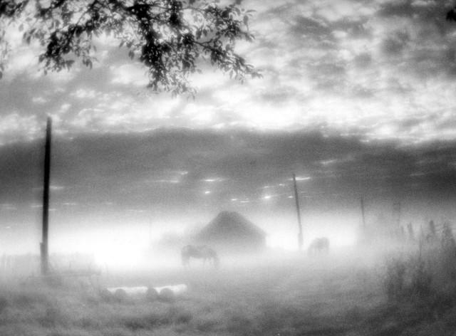 Рассвет, 1999. Фотограф Людмила Таболина