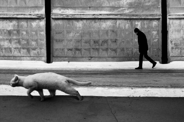 Два одиночества. Фотограф Евгения Гор