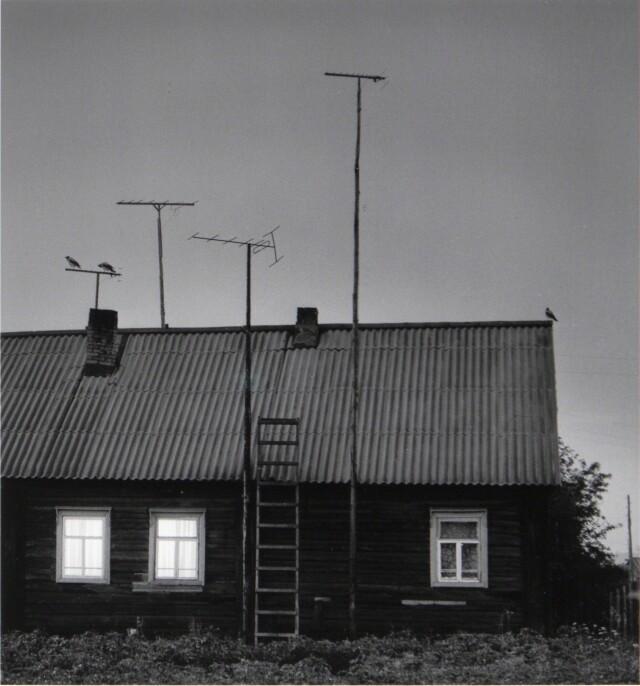 Карелия, 1990. Фотограф Пентти Саммаллахти