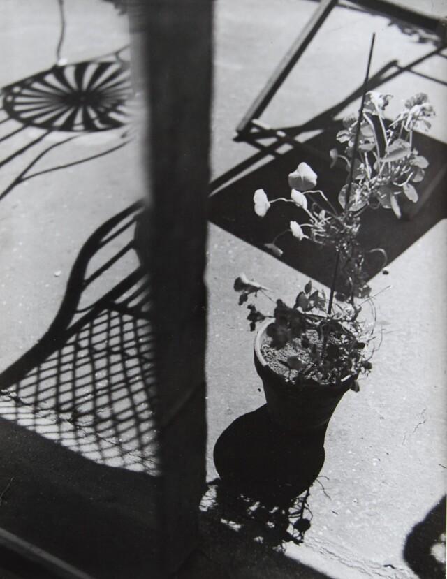 Композиция, 1931. Фотограф Флоренс Анри