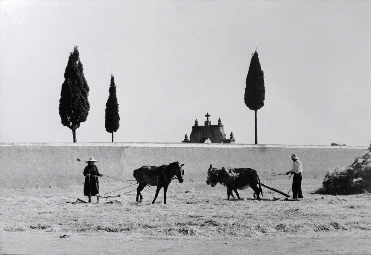 Кастилия, Испания, 1957. Фотограф Эдуард Буба