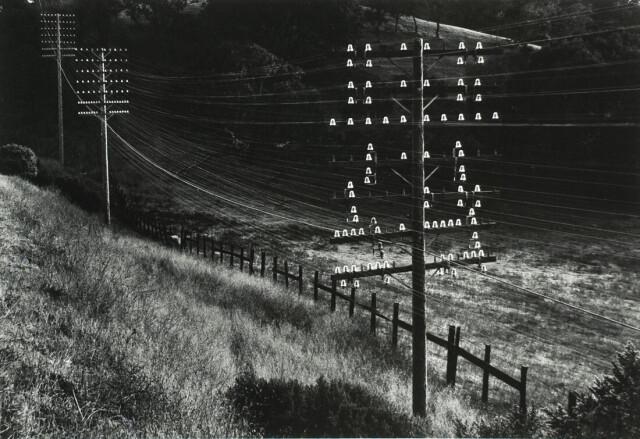 Округ Марин, Калифорния, 1948. Фотограф Пиркл Джонс