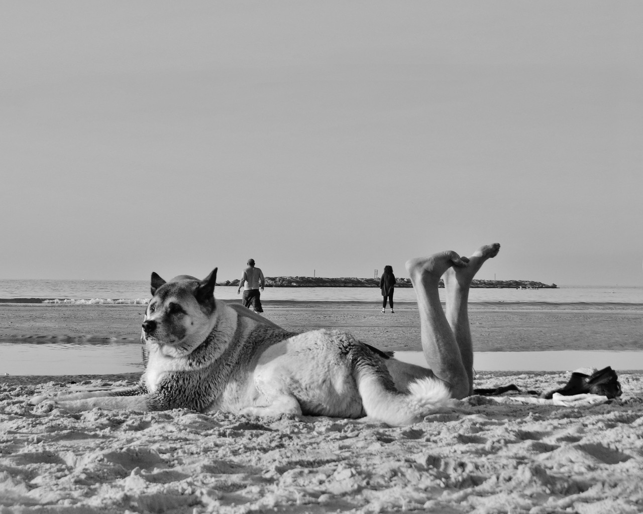 Мистика на пляже. Фотограф Антимос Нтагкас