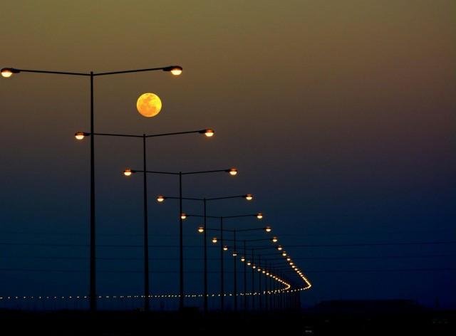 «Фонарная тропа». Фотограф Сараванан Садасивам