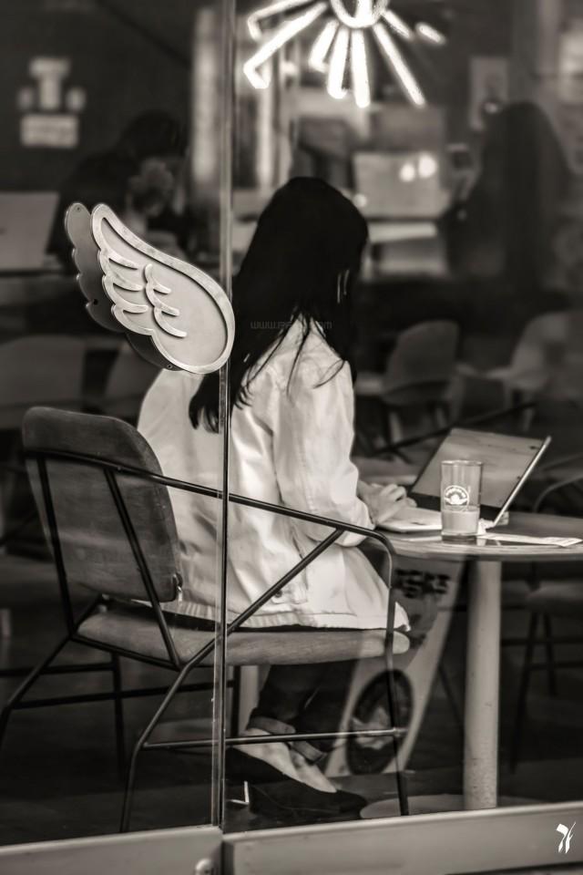 Кафешный ангел, Корея, 2019. Фотограф Пьер Фредд (pierrefredd)