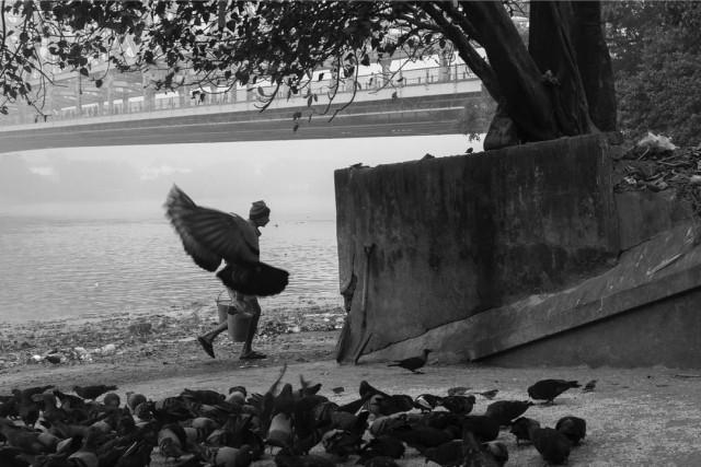«Человек-птица». Фотограф Дебрани Дас