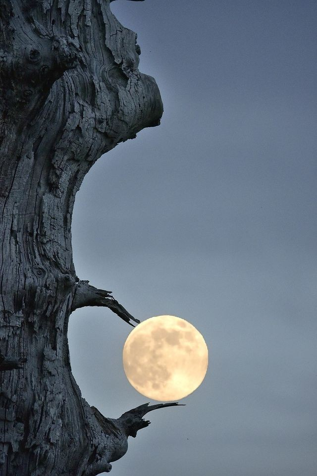«Захват Луны». Фотограф Кристоф Нэй