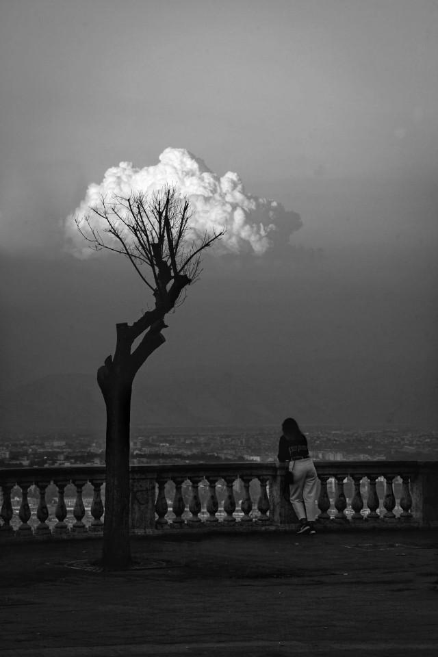 Ветви в облаках. Фотограф Сакс Палумбо