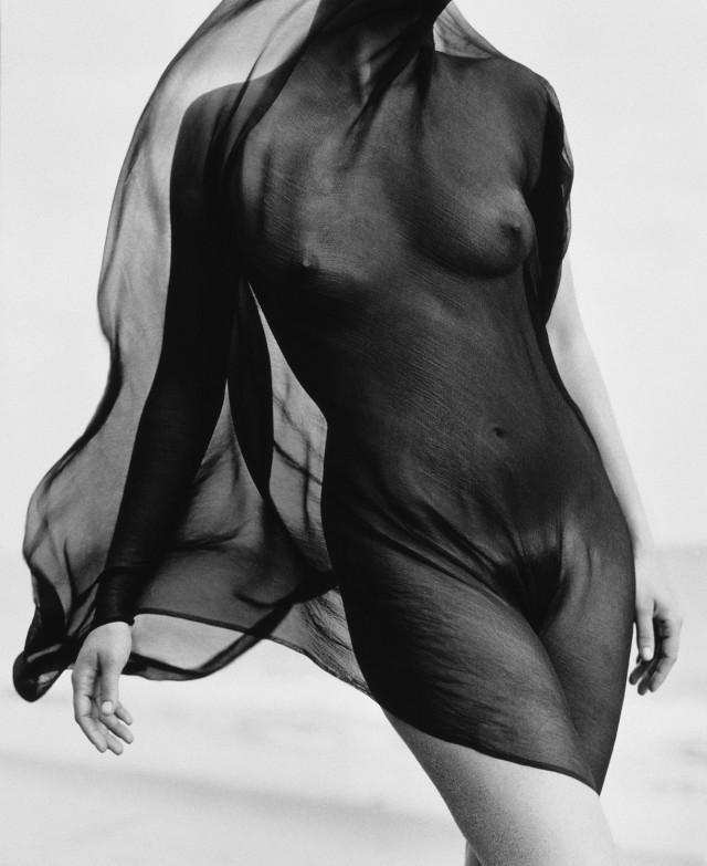Женский торс с вуалью, 1984. Автор Герб Ритц