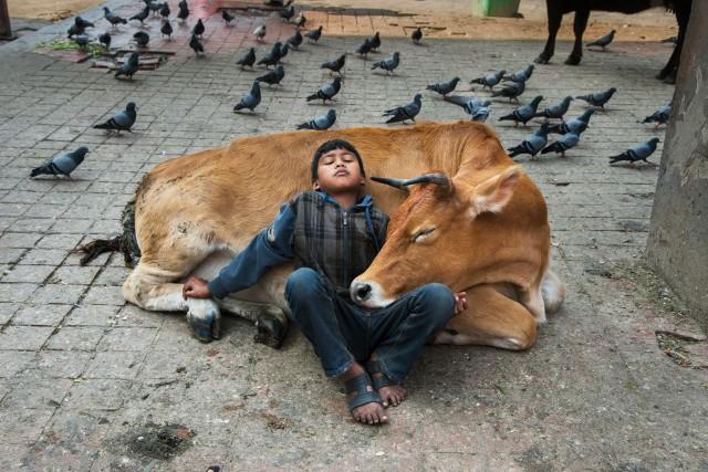 Катманду, Непал. Автор Стив Маккарри