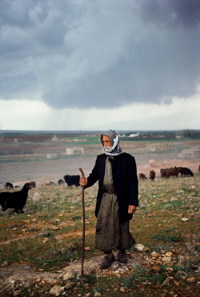 Ливан. Автор Стив Маккарри