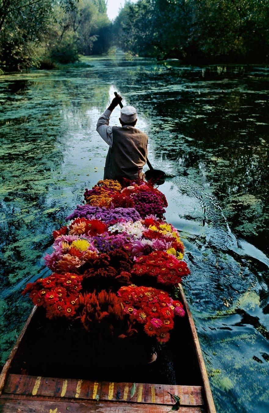 Продавец цветов. Озеро Дал в Сринагаре, Джамму и Кашмир, Индия, 1999. Автор Стив Маккарри