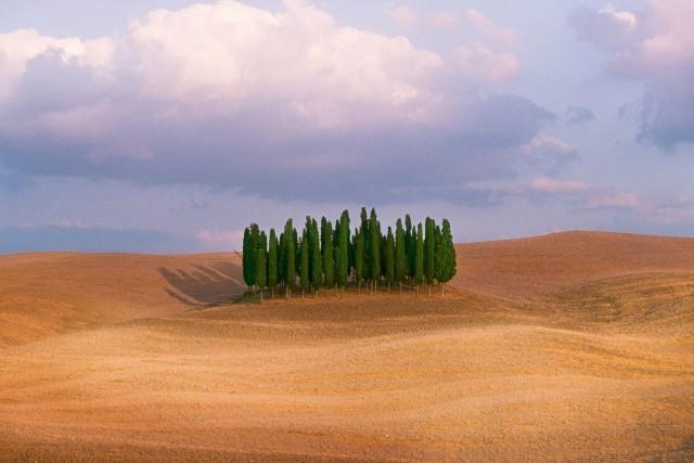 Тоскана, Италия. Автор Стив Маккарри