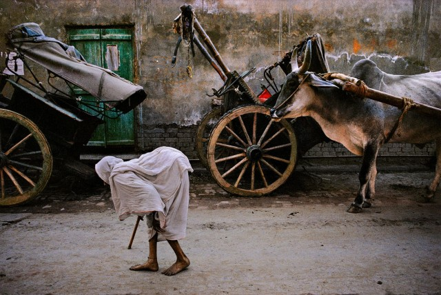 Уттар-Прадеш, Индия. Автор Стив Маккарри