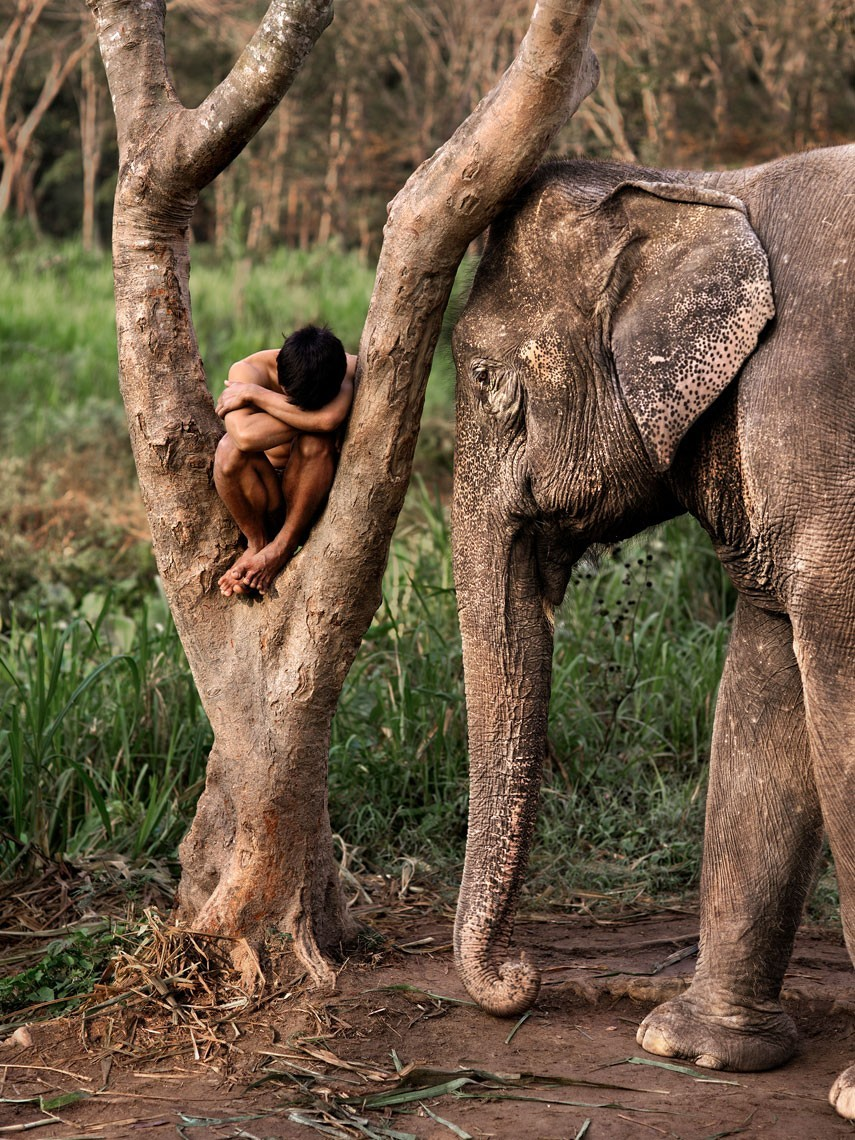 Чиангмай, Таиланд. Автор Стив Маккарри