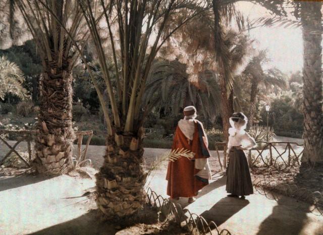 В алжирском саду, 1923. Автохром, фотограф Жюль Жерве-Куртельмон