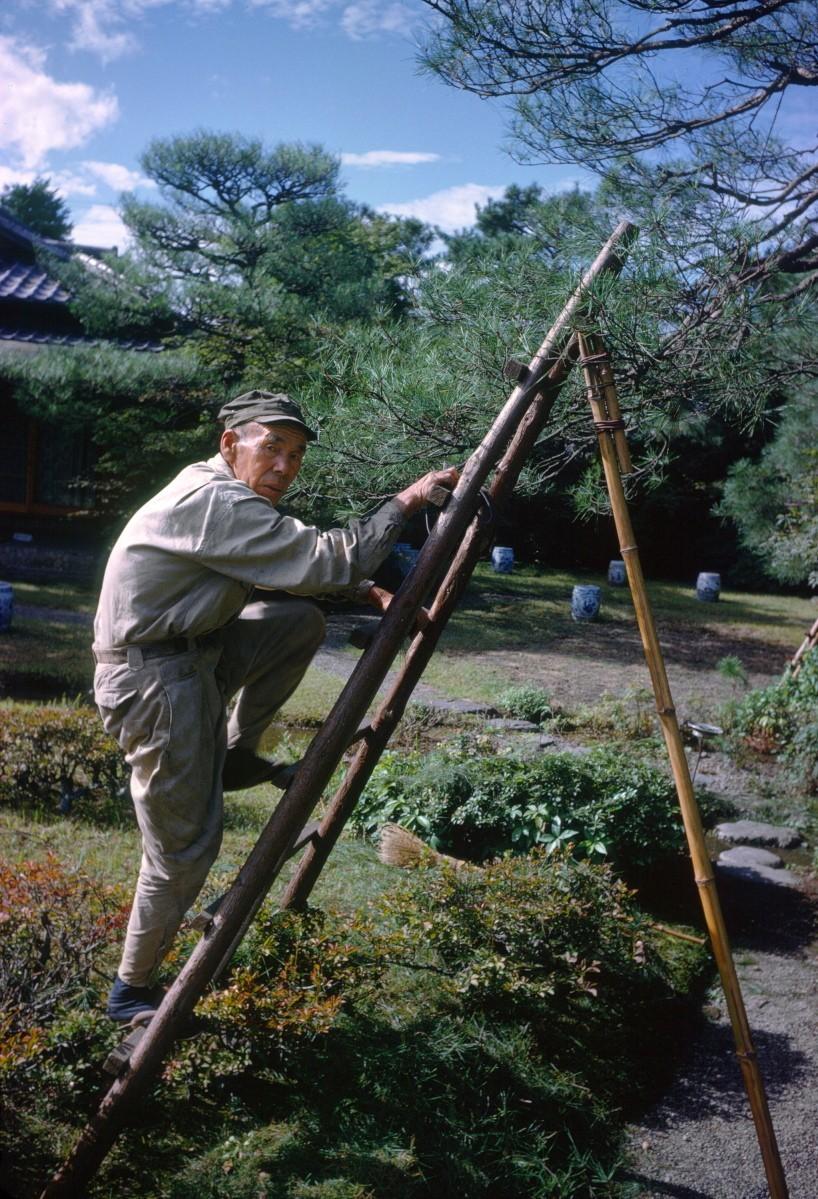 Киото, Япония, 1962. Автор Мартин Карплус