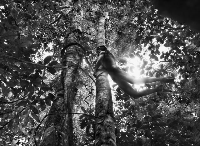Охотник из племени Зоэ, штат Пара, Бразилия, 2009. Автор Себастьян Сальгадо
