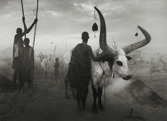 Группа народности динка в Южном Судане, 2006. Автор Себастьян Сальгадо