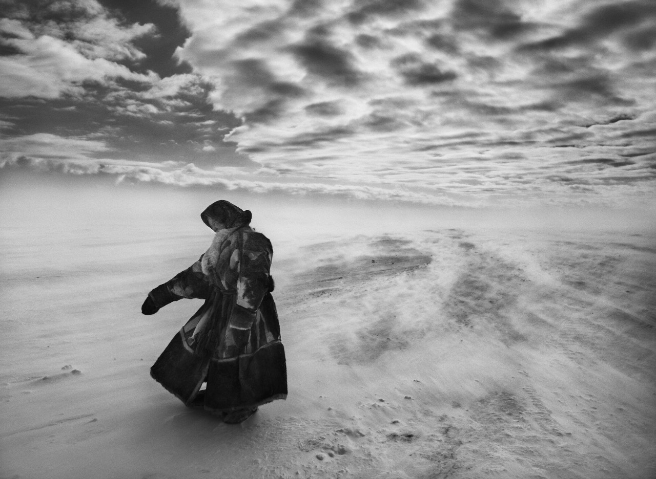 Полуостров Ямал, Сибирь, Россия, 2011. Автор Себастьян Сальгадо