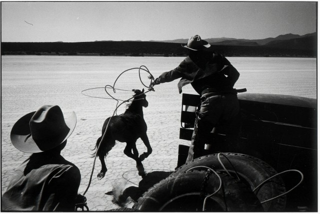 Рино, Невада, 1960. Автор Эллиотт Эрвитт