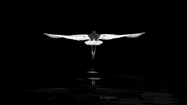 Категория «Чёрно-белое фото», 2020. Фотограф Цзянь Хуанг