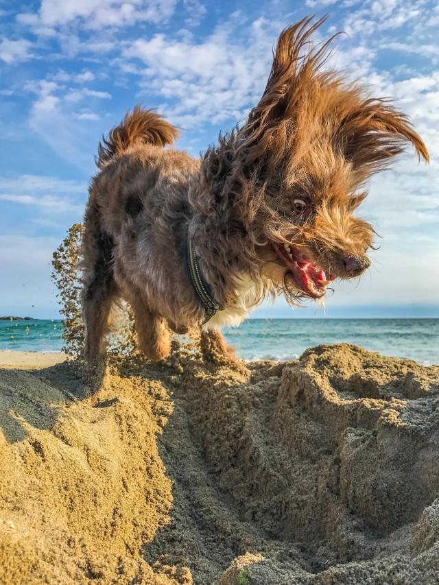«Я должен копать яму...» Фотограф Энн Лиз Грамстад