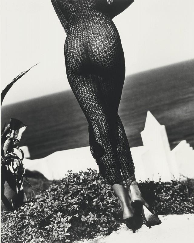 Стефани Сеймур, Playboy, 1993. Автор Санте Д'Орацио