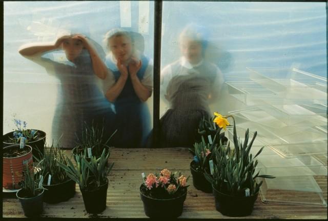 Дети гуттеритов заглядывают в окно оранжереи. Коннектикут, 1991. Фотограф Джоэл Сартор