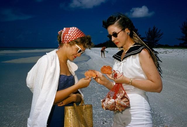Собиратели ракушек на острове Санибел, Флорида, 1959. Фотограф Пауль Цаль