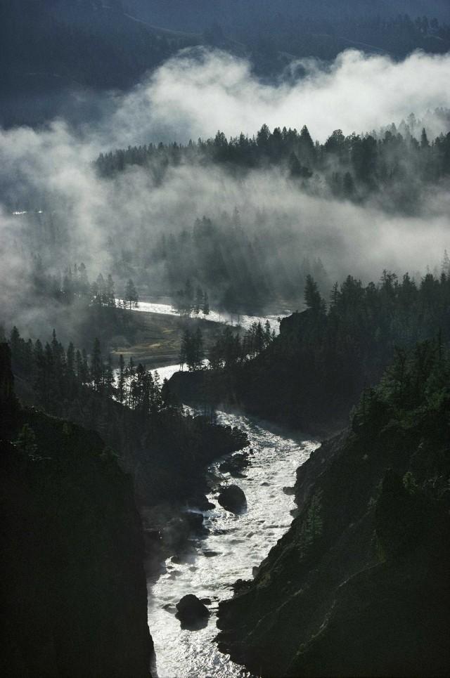 Река Йеллоустон, Монтана, 2001. Фотограф Майкл С. Куинтон