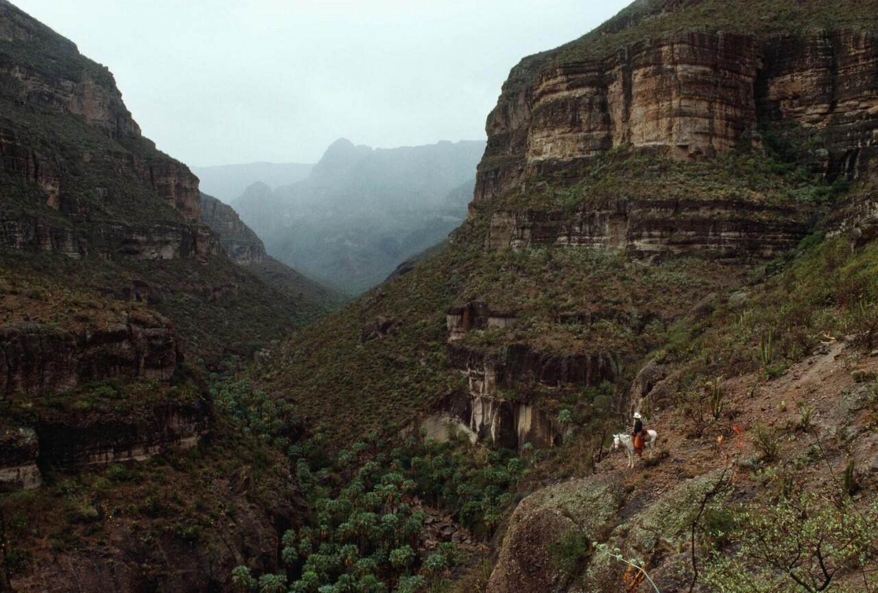 В горах Сьерра-де-Сан-Франсиско, 1989. Фотограф Энни Гриффитс