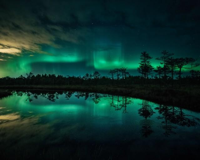 «Танцы над болотами». Северо-Западный федеральный округ, Россия. Автор Камиль Нуреев