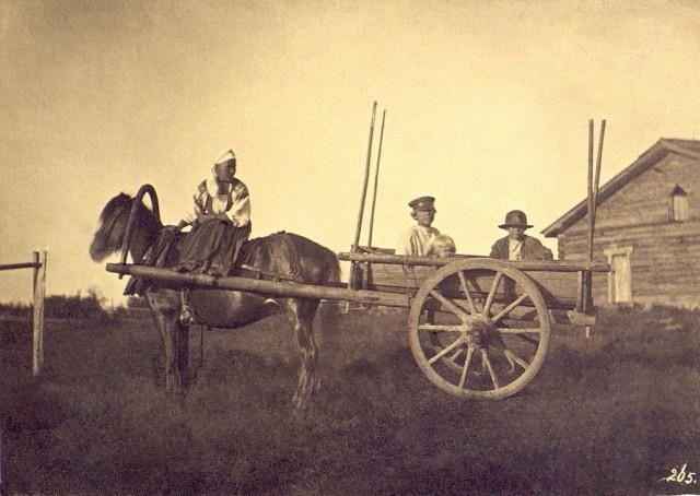 Крестьяне в двуколке. Финны-ингерманландцы. Санкт-Петербургская губерния, 1860-е