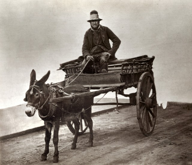 Чёрный Джек, 1877. Автор Джон Томпсон