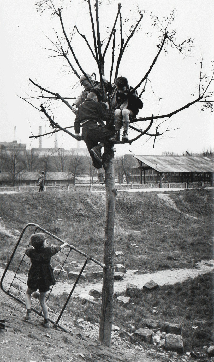 «Воробушки». Париж, 1951. Фотограф Сабина Вайс