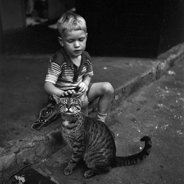 Мальчик с котом, Нью-Йорк, 1954. Фотограф Вивиан Майер