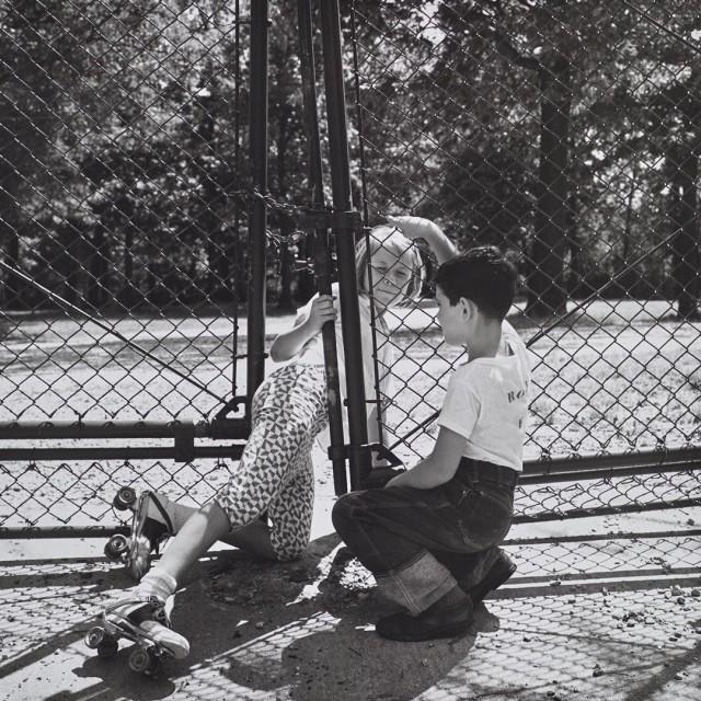 Пригород Чикаго, 1962. Фотограф Вивиан Майер