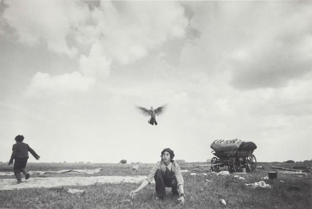 Мальчик с голубем, Уральск, 1979. Фотограф Ляля Кузнецова