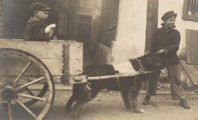 Сен-Пьер и Микелон, 1928. Фотограф Мэри Эйерс