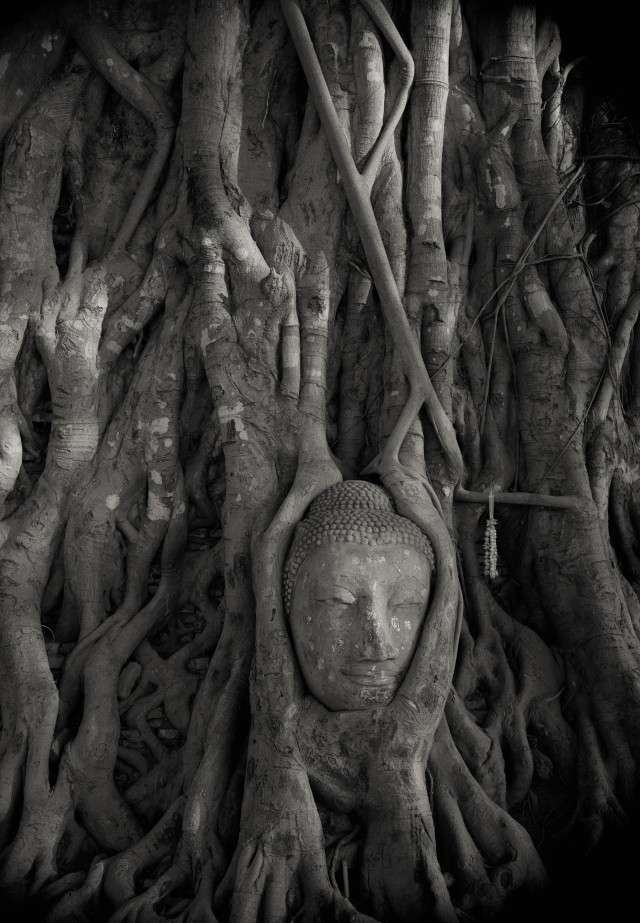 Аюттхая, Таиланд, 1998. Фотограф Кенро Идзу