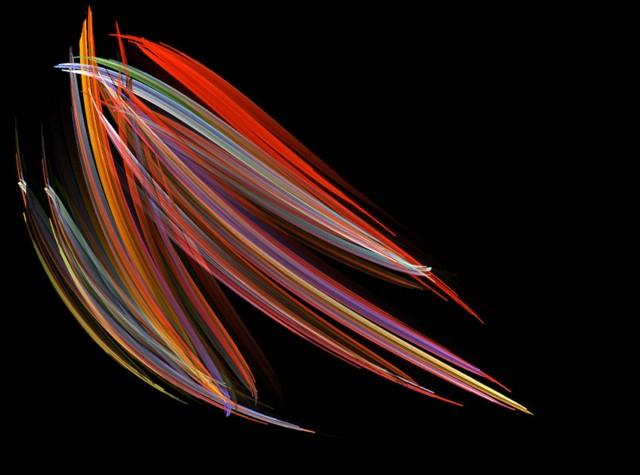 Микрофотография морских диатомей, 2008. Фотограф Майкл Дж. Стрингер