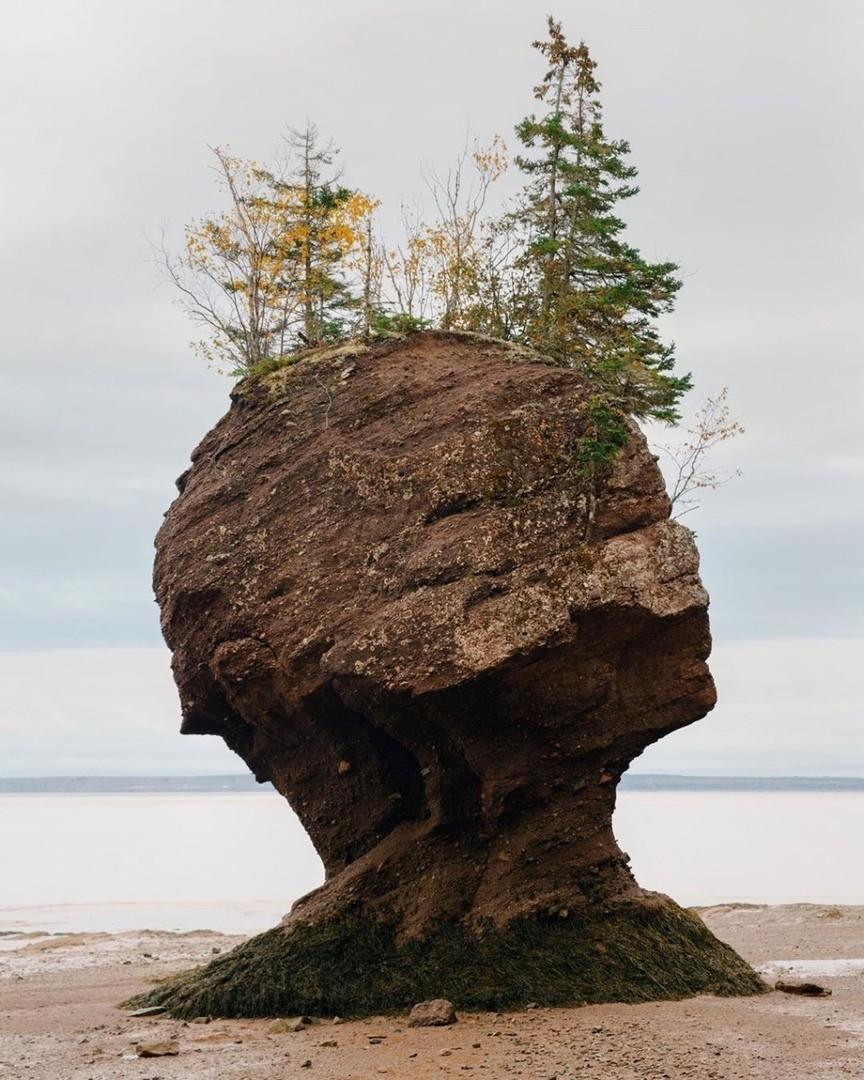 Cкалы Хоупвелл в заливе Фанди, Канада