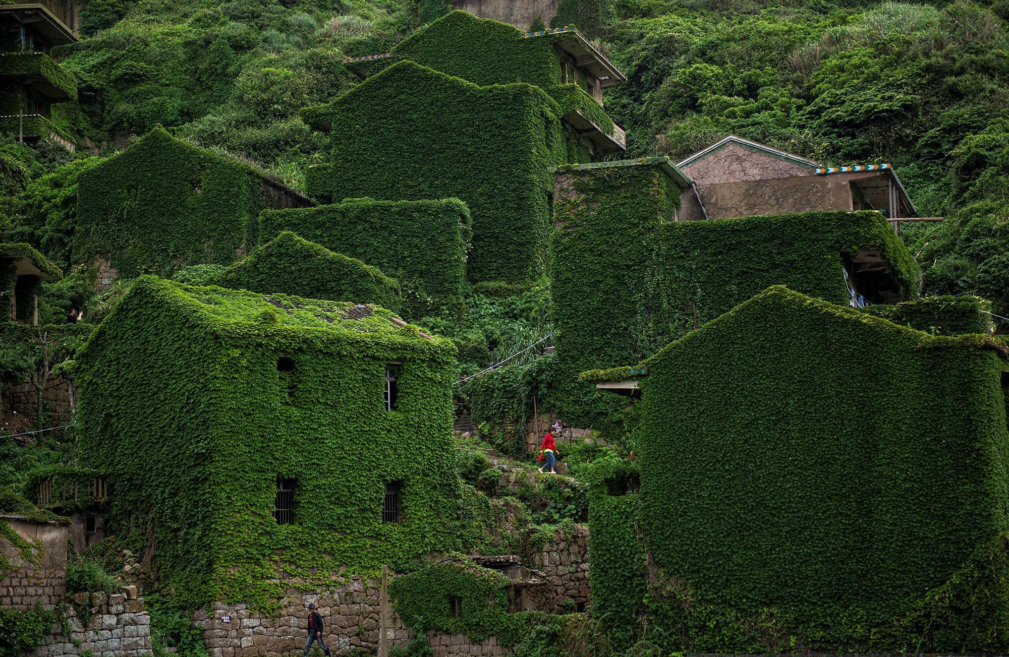 Виноград в деревне Хутуван, Китай