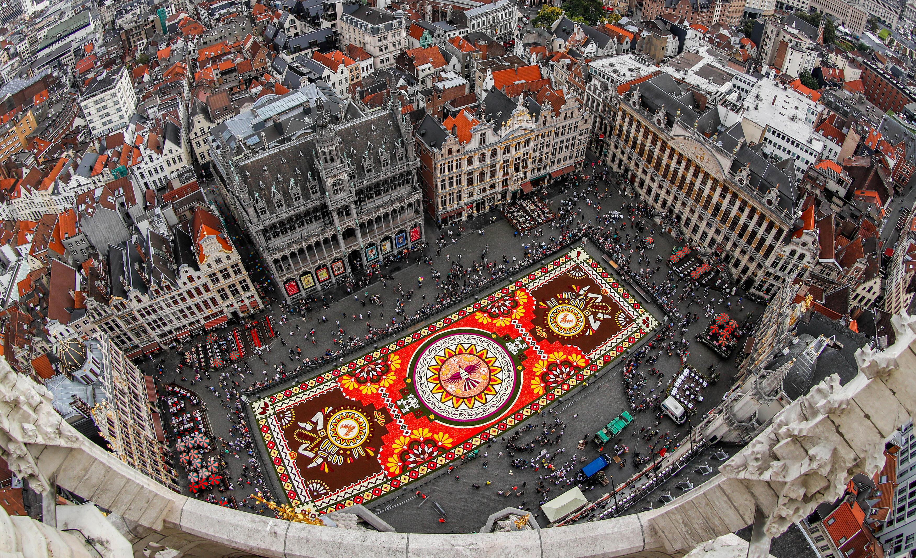 Гигантский ковёр из живых цветов на главной площади Брюсселя