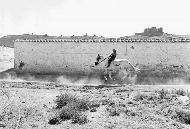 Рыцарь Ла-Манчи, 1956. Фотограф Пьерджорджо Бранци